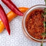 Rotes Pesto mit getrockneten Tomaten – einfach und schnell selbst gemacht!