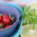 Herrlich erfrischend … Strawberry-Gin-Cocktail