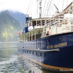 Neuseeland Teil 3 | Milford Sound & Co.
