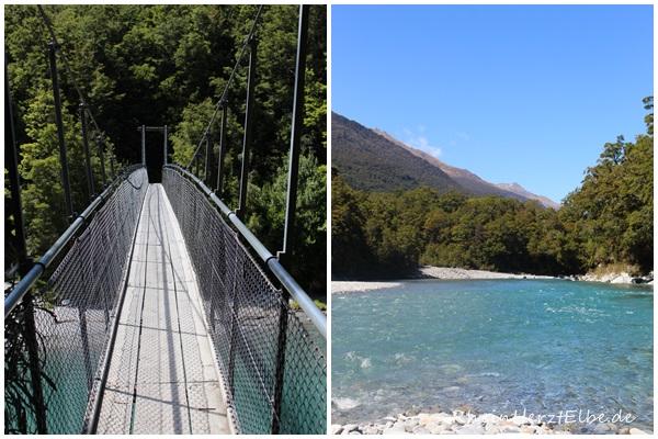 Westküste Neuseeland 42