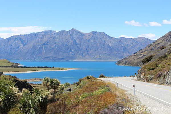 Westküste Neuseeland 44