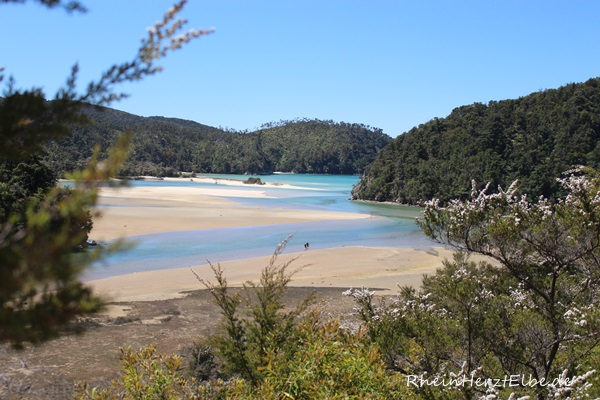 Neuseeland 7