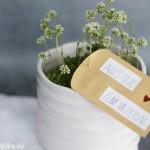 Lieblings – Duschgel | DIY Idee zum Muttertag