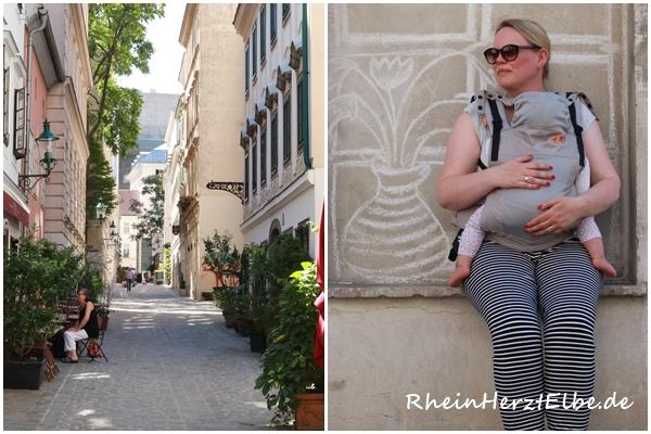 Rheinherztelbe Baby Tula Babytrage 3