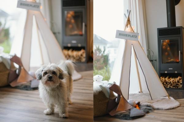 DIY Idee Hunde Tipi rheinherztelbe